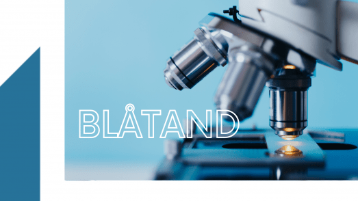 Blåtand - sciences - Institut français du Danemark